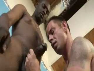 Big muscled black gay boys humiliate white twinks hardcore 15 / 21