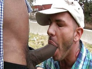 Huge throbbing cock / 52